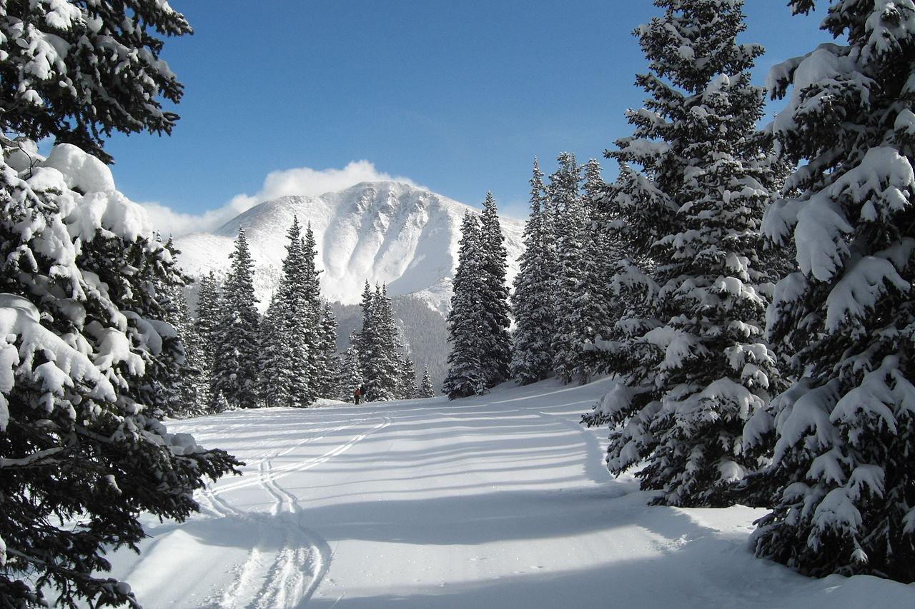 lemonldap-ng-portal/site/htdocs/static/common/backgrounds/1280px-Parry_Peak_from_Winter_Park.jpg