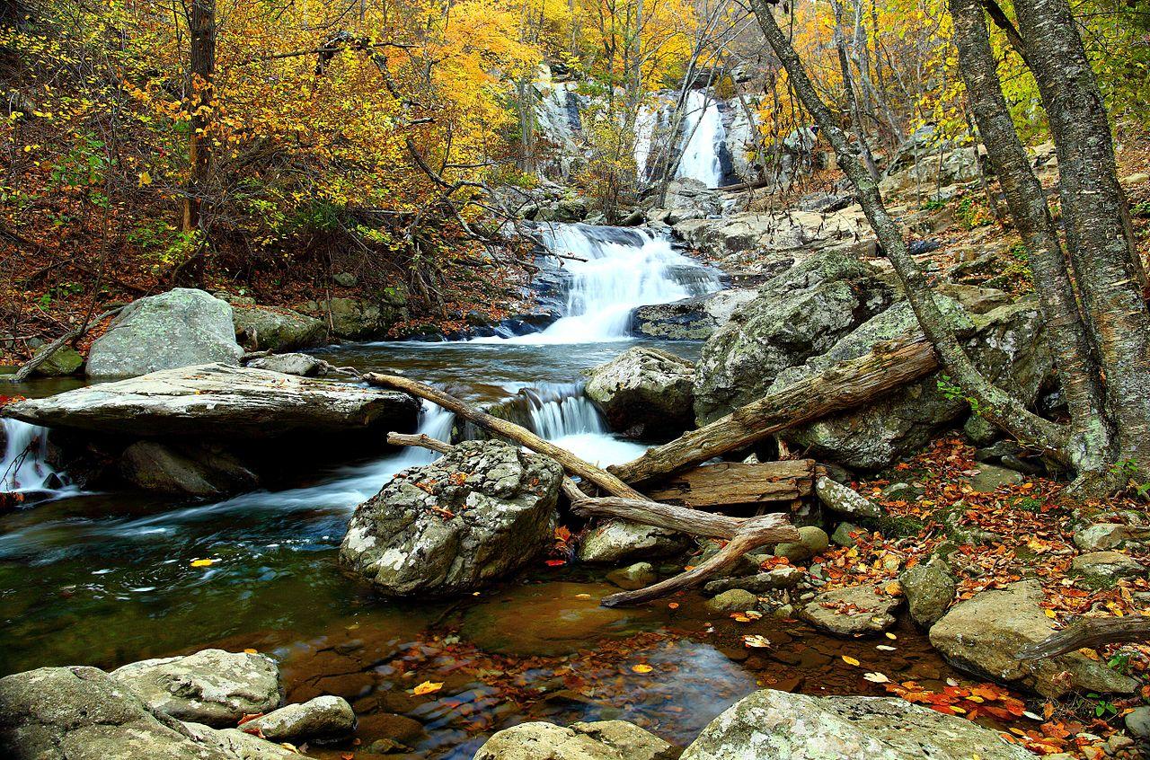 lemonldap-ng-portal/example/skins/common/backgrounds/1280px-Autumn-clear-water-waterfall-landscape_-_Virginia_-_ForestWander.jpg