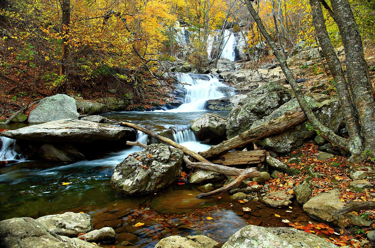 lemonldap-ng-portal/example/skins/common/backgrounds/1280px-Autumn-clear-water-waterfall-landscape_-_Virginia_-_ForestWander.jpg